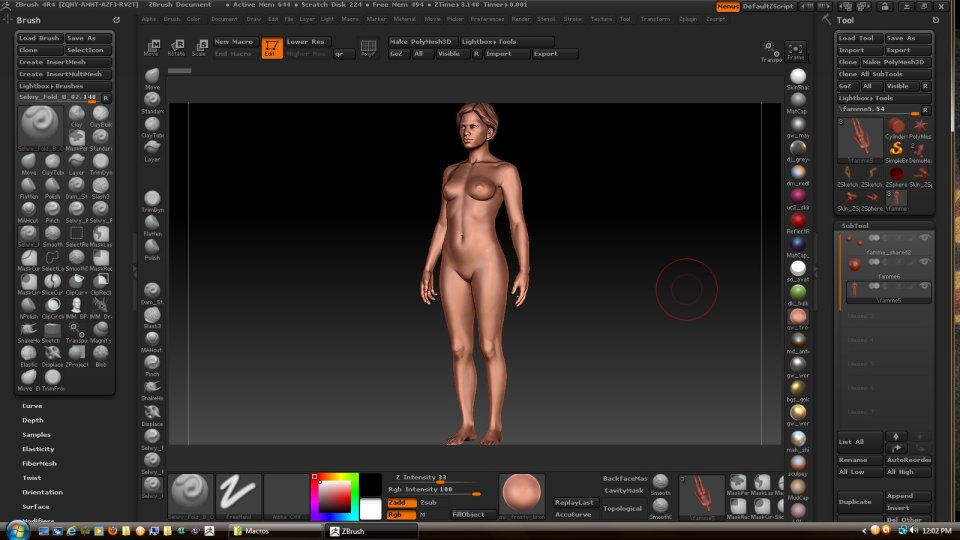 zbrush with workspace customizations